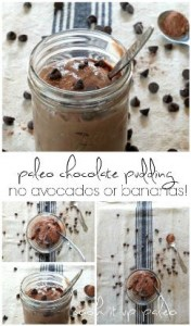 Paleo Chocolate Pudding